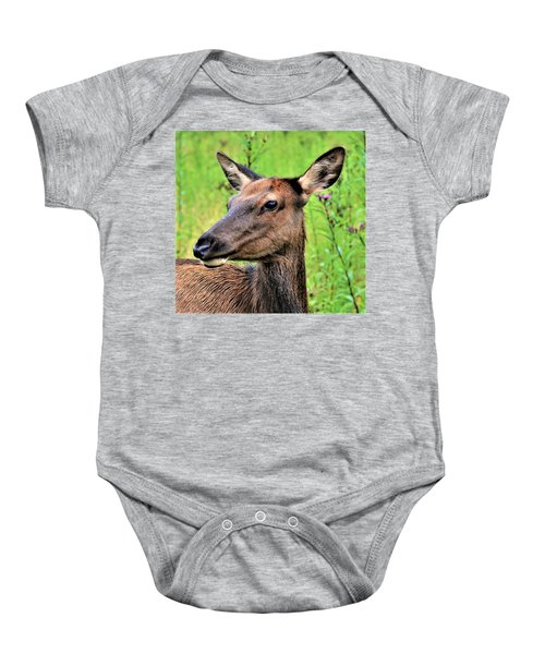 Attentive Yearling Baby Onesie