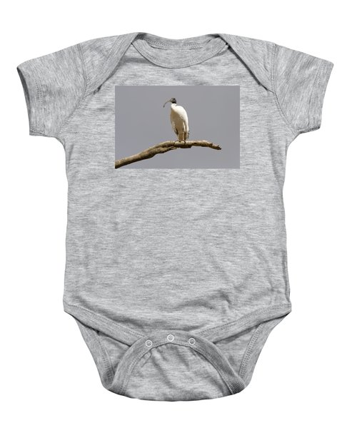 Australian White Ibis Perched Baby Onesie