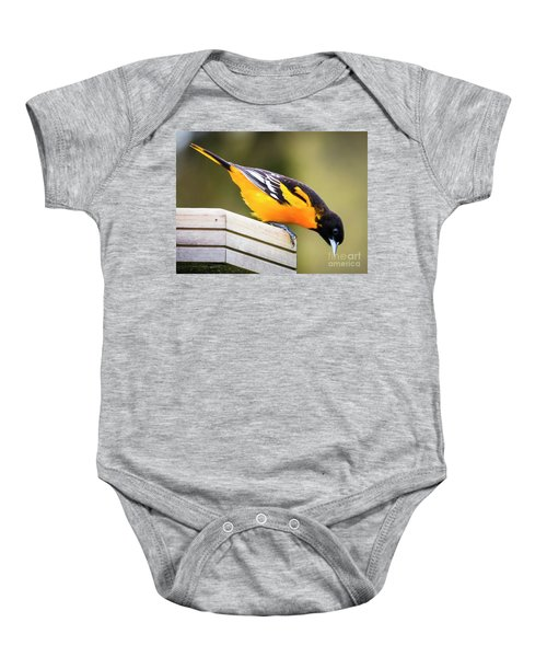Baltimore Oriole About To Jump Baby Onesie