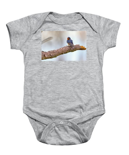 Barn Swallow On Assateague Island Baby Onesie by Rick Berk