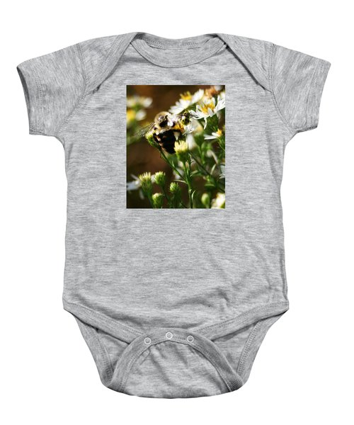 Bee And Spotted Cucumber Beetle On Aster Baby Onesie