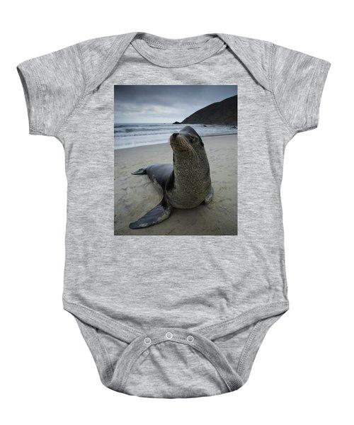 Big Seal Baby Onesie