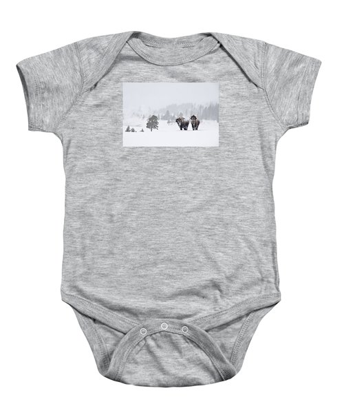 Bison In The Snow Baby Onesie by Gary Lengyel