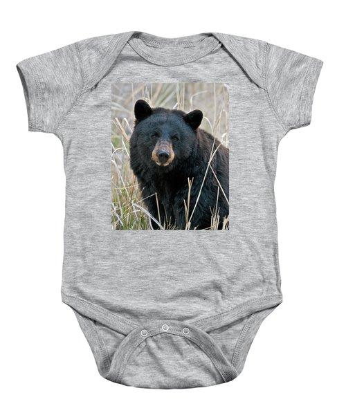Black Bear Closeup Baby Onesie