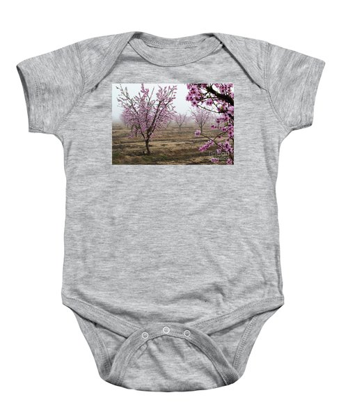 Baby Onesie featuring the photograph Blossom Trail by Vincent Bonafede