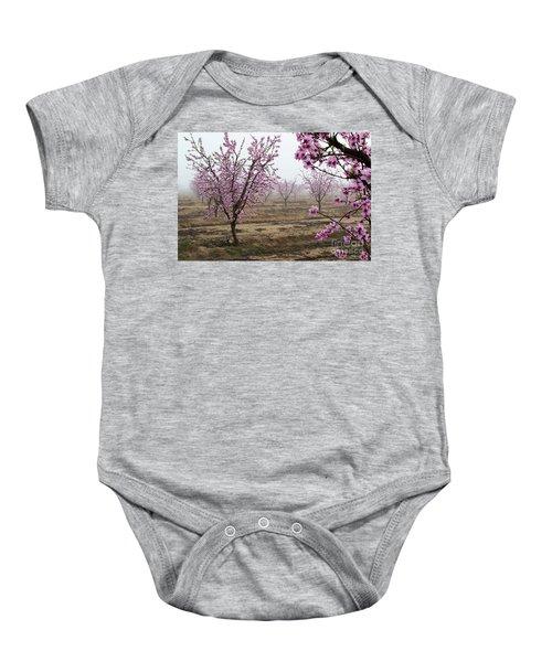 Blossom Trail Baby Onesie