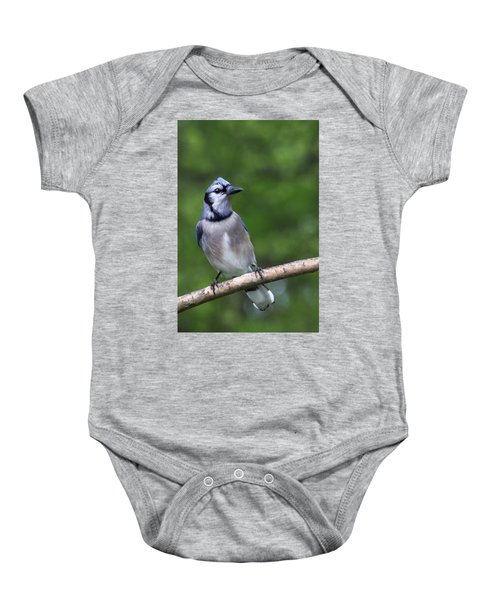 Blue Jay On Alert Baby Onesie
