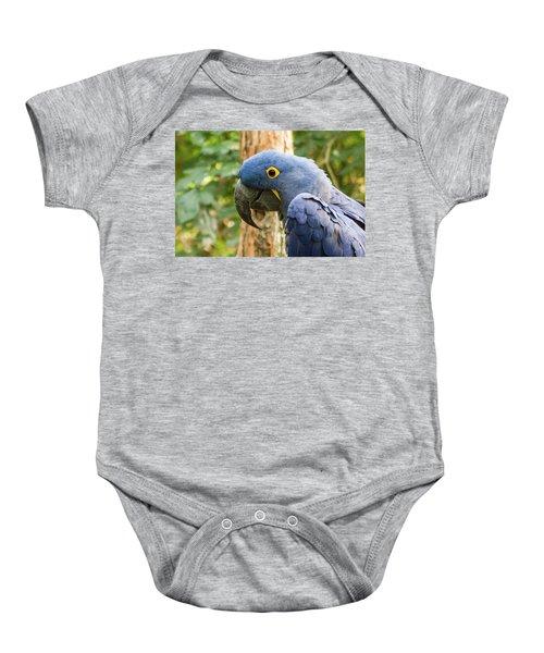 Blue Macaw Baby Onesie