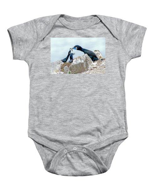 Brandt's Cormorant Feeding Family Baby Onesie