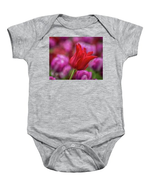 Baby Onesie featuring the photograph Brazenly Delicate by Bill Pevlor