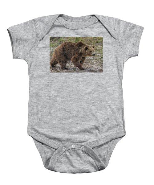 Brown Bear 6 Baby Onesie