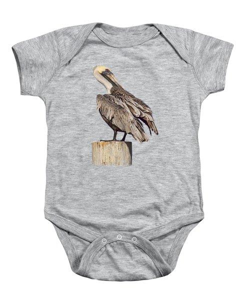 Brown Pelican - Preening - Transparent Baby Onesie