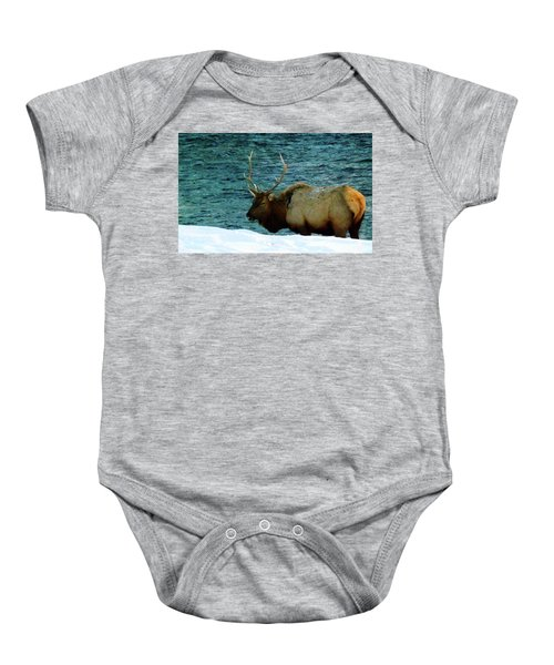 Bull Elk In Winter Baby Onesie