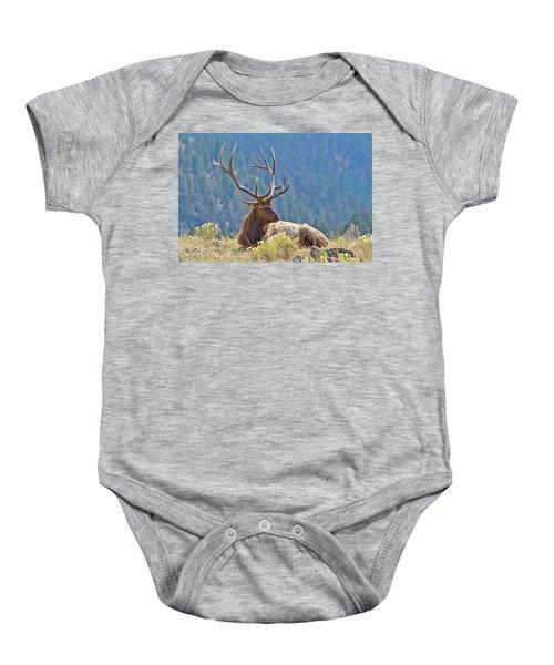 Bull Elk Resting Baby Onesie
