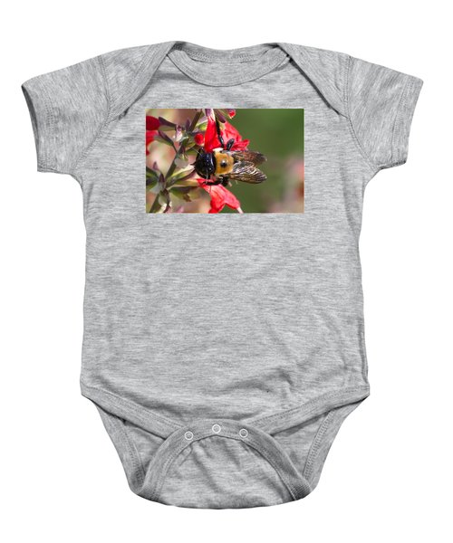 Bumble Bee Baby Onesie