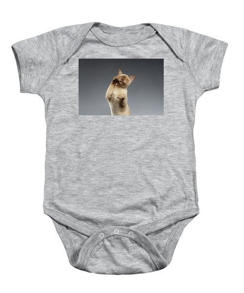 Burma Cat Paws Snout Covers On Gray Baby Onesie