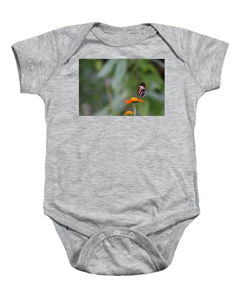 Butterfly 16 Baby Onesie