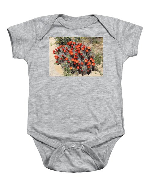 Cactus Bloom In Jtnp Baby Onesie