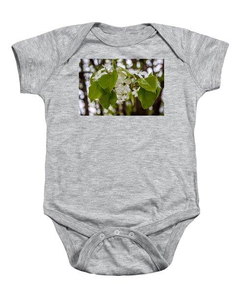 Callery Pear Tree Bloom Baby Onesie