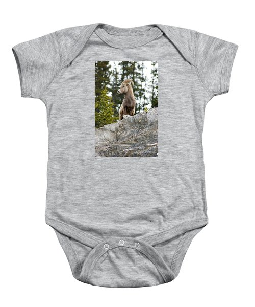 Canadian Bighorn Side Profile Baby Onesie