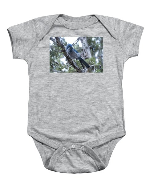Canyon Jay Baby Onesie