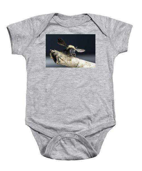 Carpenter Bee Baby Onesie
