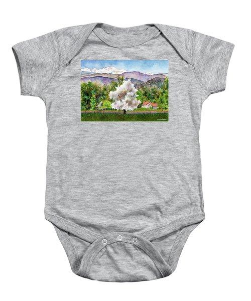 Celeste's Farm Baby Onesie