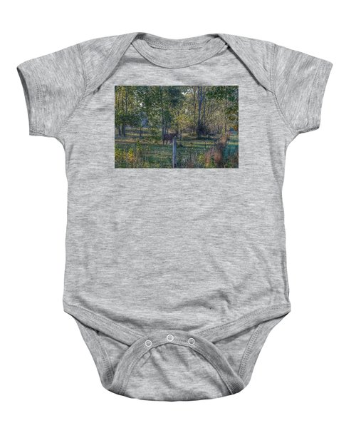 1009 - Chestnut Horse Among The Trees Baby Onesie