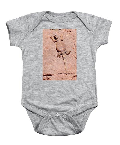 Chuckwalla, Saurolamus Ater Baby Onesie