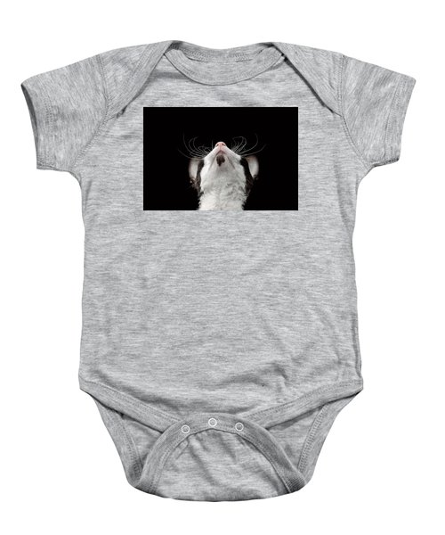 Closeup Portrait Of Cornish Rex Looking Up Isolated On Black  Baby Onesie