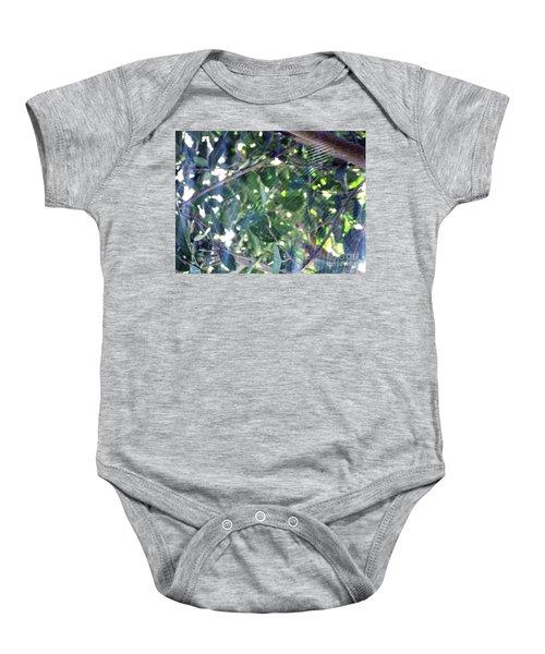 Cobweb Tree Baby Onesie