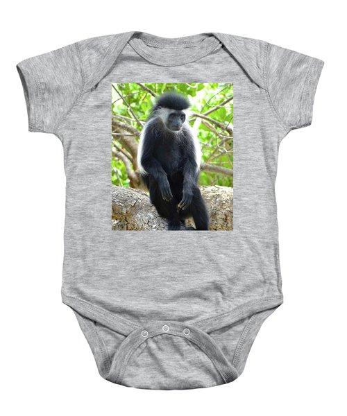 Colobus Monkey Sitting In A Tree 2 Baby Onesie