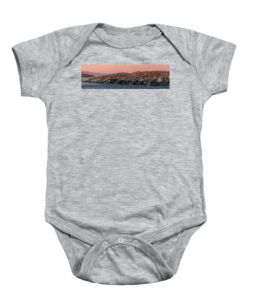 e50d4f9ee Colony Of King Cormorants Beagle Channel, Patagonia Baby Onesie