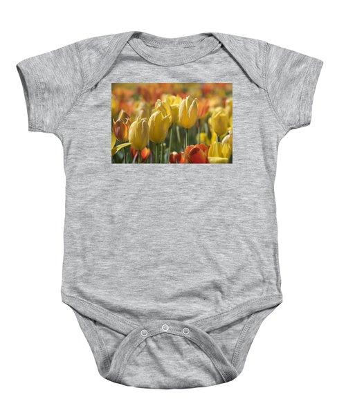 Coming Up Tulips Baby Onesie