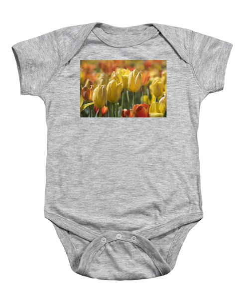 Coming Up Tulips Baby Onesie