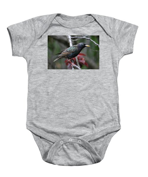 Common Starling Baby Onesie