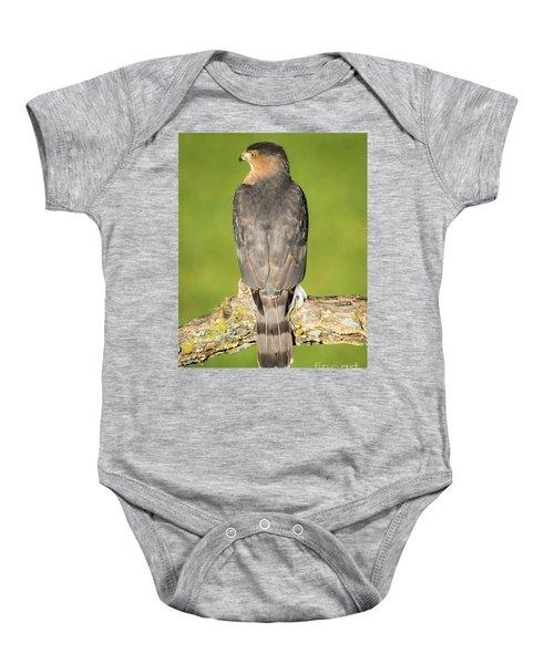 Cooper's Hawk In The Backyard Baby Onesie