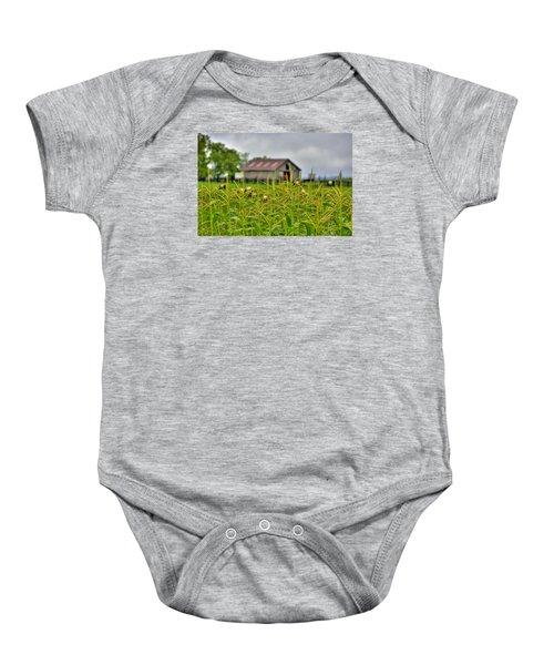 Corn Tops Baby Onesie
