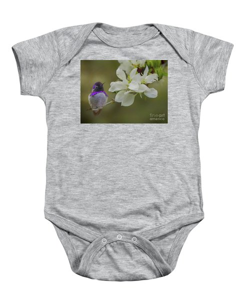 Costas Hummingbird On An Anacacho Orchid Branch Baby Onesie