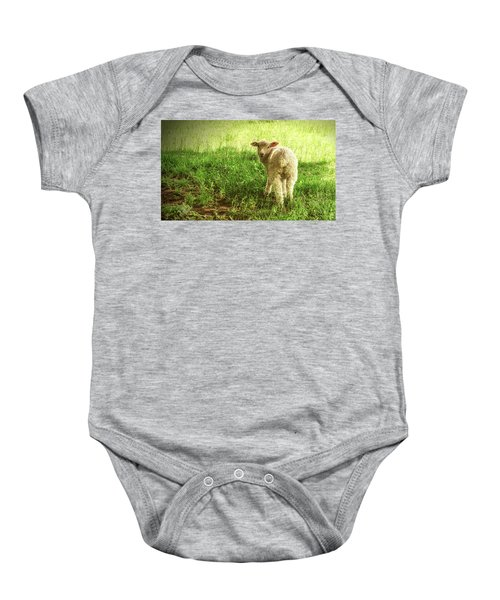 Cotswold Sheep Baby Onesie
