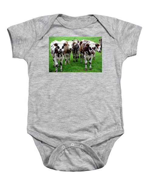 Cow Group Baby Onesie