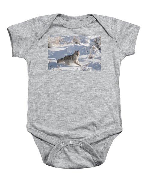 Coyote On The Move Baby Onesie