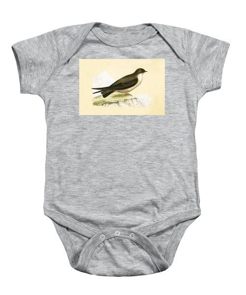Crag Swallow Baby Onesie by English School