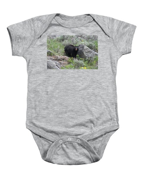 Curious Black Bear Baby Onesie