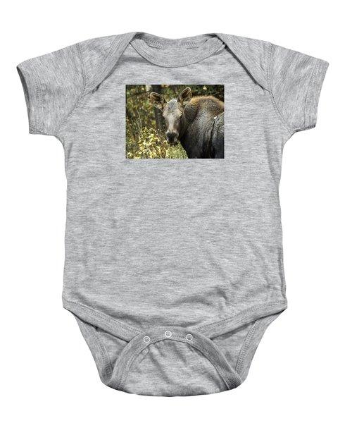 Curious Calf Baby Onesie