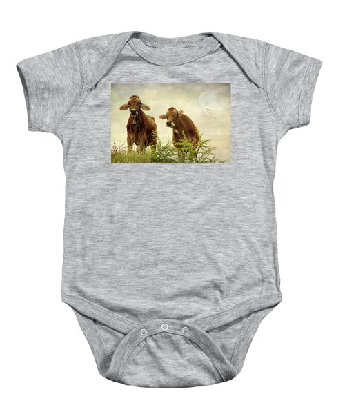 Curious Cows Baby Onesie