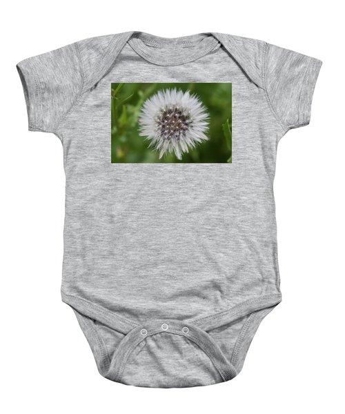 Dandelions Baby Onesie