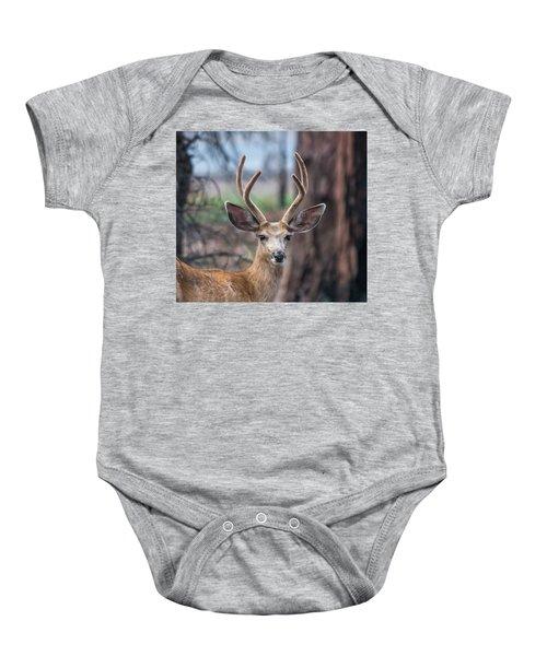 Deer Stare Baby Onesie