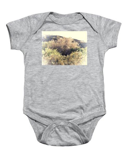 Desert Ironwood Afternoon Baby Onesie