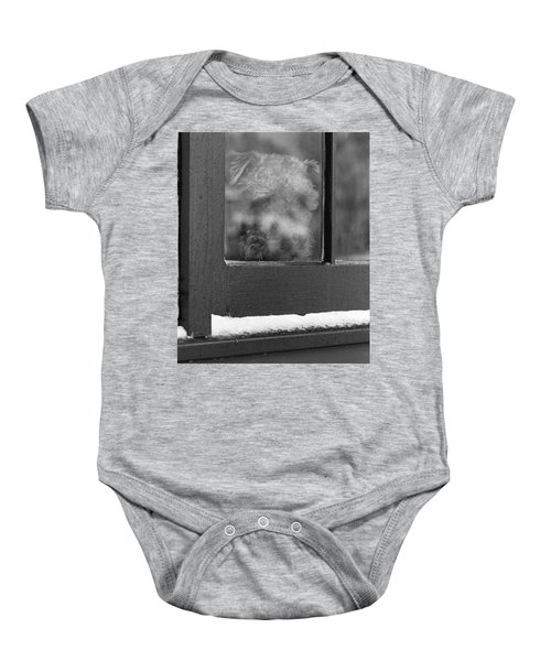 Doggy In The Window Baby Onesie